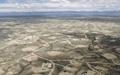 بهرهبرداریهای نفتی عامل نابودی حیات وحش و رشد گونههای مخرب گیاهی