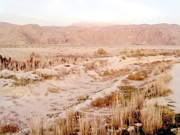 ضرورت حفاظت از کوه شاهوار