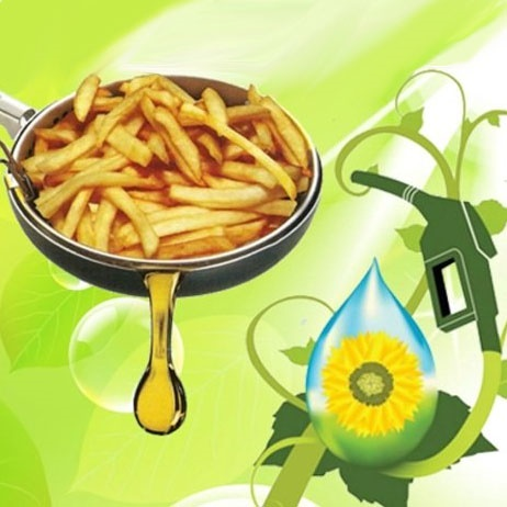روغن خوراکی به سوخت پاک تبدیل میشود