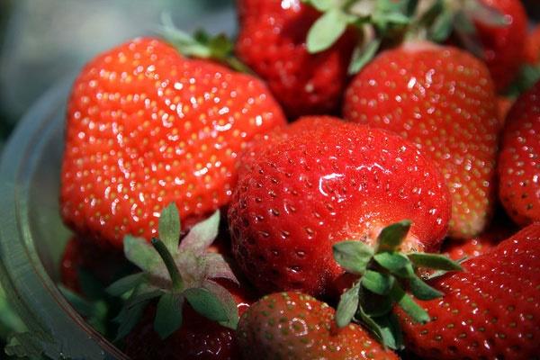 کاهش کلسترول با مصرف توت فرنگی