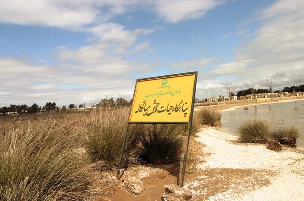 اصرار بر اجرای طرح مخرب گردشگری در آشوراده