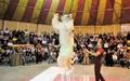 درخواست از مجلس برای حمایت از سیرک بدون حیوان