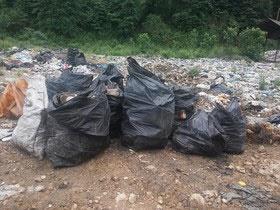 اولین زبالههای پلاستیکی بشر هنوز در طبیعت هست