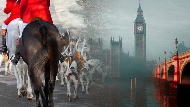 ممنوعیت شکار روباه، چالش جدید دولت محافظه کار انگلیس