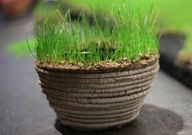 ساخت باغ دلخواه با چاپگر سهبعدی گیاهان