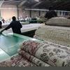 قیمت انواع فرش؛ خودنمایی فرشهای ۲۰۰ میلیون تومانی؛ توصیههایی برای نگهداری فرش