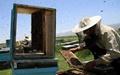 خسارت ۳۶ میلیارد ریالی زنبورداران خوزستان از ریزگردها
