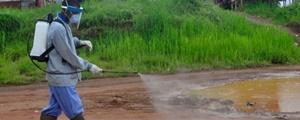 ابولا به لیبریا باز میگردد