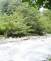 تهرانیها هرثانیه ۴برابر جریان رودخانه کرج آب مصرف میکنند