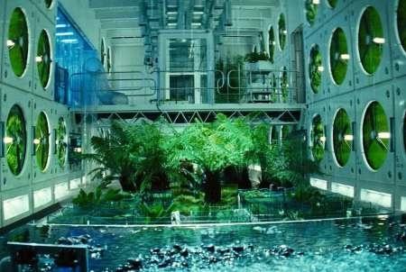 پرورش سبزیجات در فضا
