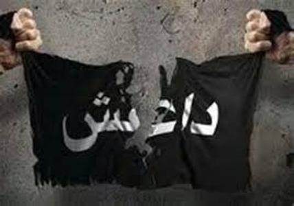 داعش بار دیگر بیعت اخوانی های مصر را با ابوبکر البغدادی خواستار شد