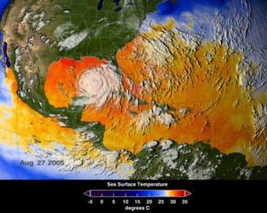 طوفانهای ویرانگر عامل وقوع آتشسوزی در جنگلها