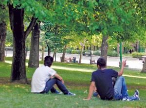 ۵ میلیون دانشجو در راه بازار کار