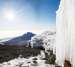 یخ قطب