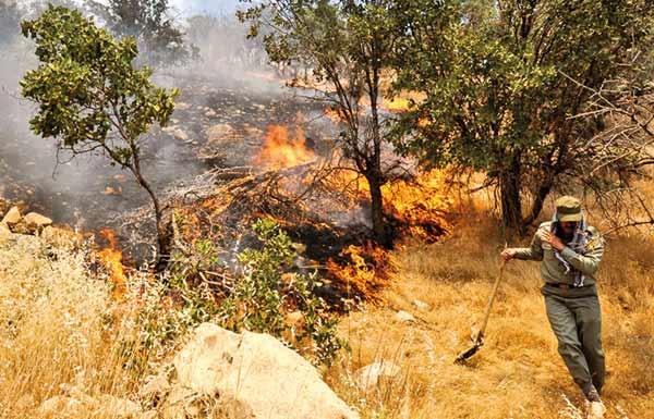 افزایش آتشسوزیها در مناطقحفاظتشده ایلام