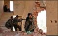 المیادین: ارتش سوریه از کنترل کامل شهر حسکه خبر داد