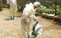 ایران از آنفلوانزای مرغی پاک شد