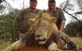 چالش گردشگری زیمبابوه پس از کشته شدن شیر مشهور