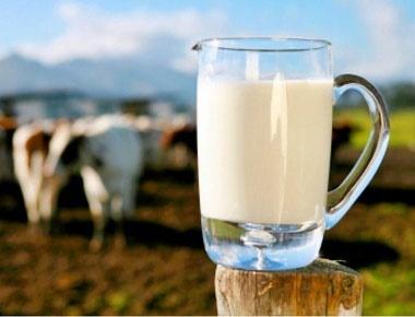 شیر را گرم بخوریم یا سرد؟