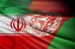 ایران به پژوهشگران افغانستانی آموزشهای حفاظتی میدهد
