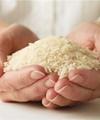 قیمت رسمی برنج ایرانی در بازار مشخص شد