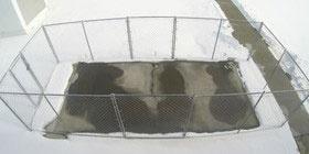 جادههای ایمن در زمستان با بتنهای ضد یخ