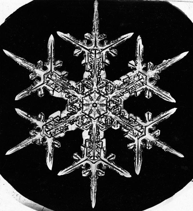 چهکسی اولینبار از یک دانه برف عکس گرفت؟
