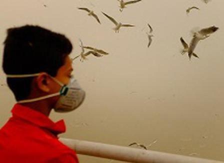 میزان آلودگی هوا در اهواز حدود ۱۳ برابر حد مجاز اعلام شد