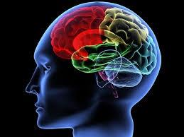 جایگاه افسردگی در مغز کشف شد