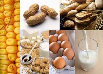 مواد غذایی که سبب آلرژی می شوند