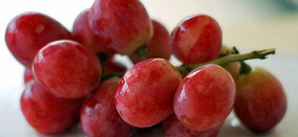 مصرف انگور قرمز ریسک ابتلا به آسم را کم میکند