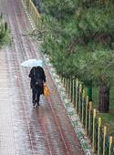هوای ایران | پیشبینی باران برای تهران
