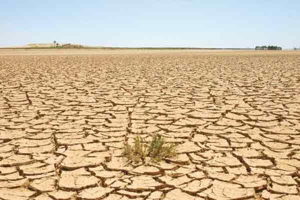 هشدار نسبت به بیابان شدن ۹۱۹هزار هکتار مراتع استان تهران