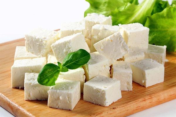 پنیر طول عمر را افزایش میدهد