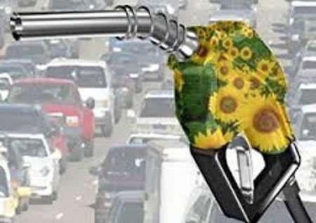 استفاده از سوخت زیستی برای رفع آلودگی هوا نیازمند عزم ملی است
