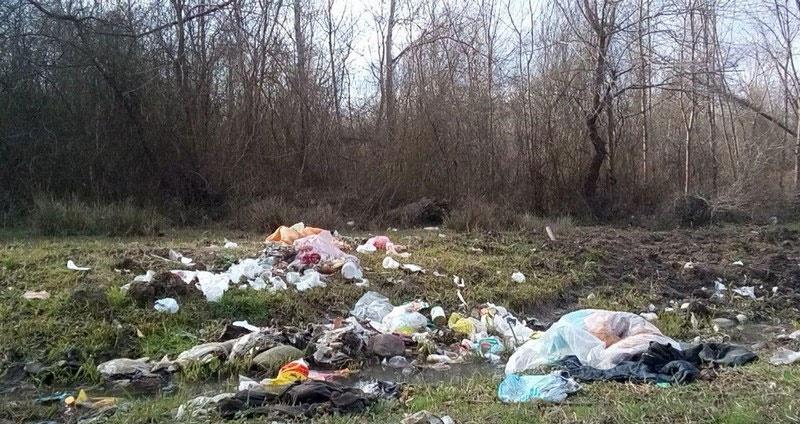 دفن زباله عروس شهرهای شمال در جنگل!