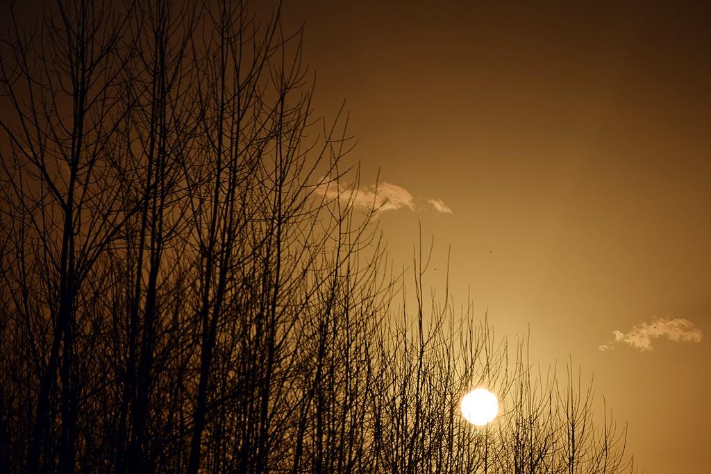 ماه است و پاورچینهای خیال