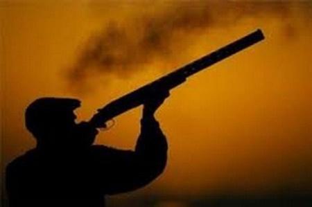 ممنوعیت شکار پرندگان تا مشخص شدن وضعیت آنفلوانزای حاد