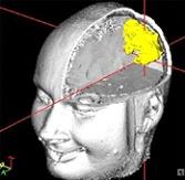 آشنایی با ناوبری مغزی