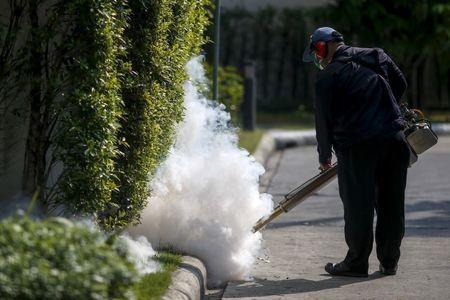 تایلند نخستین مورد محلی عفونت با ویروس زیکا را اعلام میکند