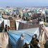افغانستان: برای جلوگیری از مهاجرتها به حمایت اروپا نیازمندیم
