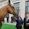 اسب پیشکشی پوتین به پادشاه بحرین