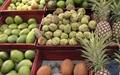 میوههای ممنوعه چگونه میرسند؟