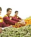 انتقاد از توزیع سیب آمریکایی در میادین میوه و ترهبار