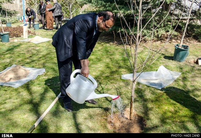درختکاری جمعی از اهالی هنر و رسانه