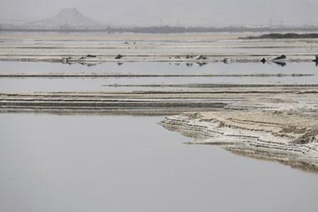۴۵ درصد از سطح دریاچه فصلی تالاب میقان اراک آبگیری شد