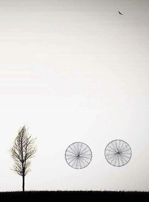 دوچرخه شماره ۸۲۷