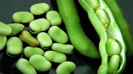 آشنایی با خواص سبزیجات نوبرانه فصل بهار