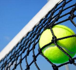 ارجمندی و داودی قهرمان تنیس مناطق پنجگانه کشور شدند