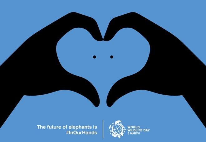 پوستر برگزیده رقابت برترین پوستر روز جهانی حیاتوحش